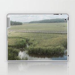 Peaceful Marshy Meadow Laptop & iPad Skin