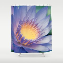 He makana nau Ke Aloha - Nymphaea stellata  - Star Lotus Shower Curtain