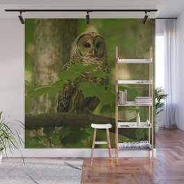 Beautiful Barred Owl Mother Wall Mural