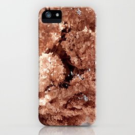 hortensia dried flowers hanging iPhone Case
