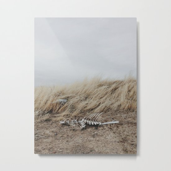Winded Skeleton Metal Print