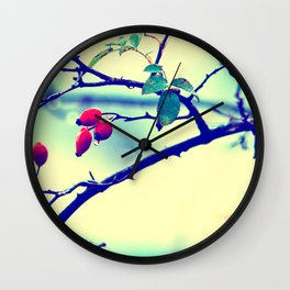Rosehips with water beads Wall Clock