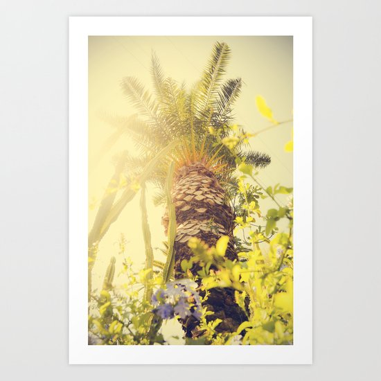 Underneath a California Palm Tree Art Print