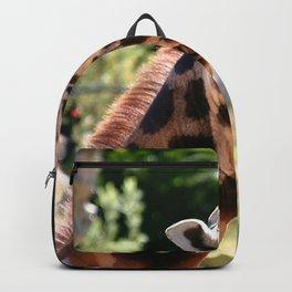 Baringo Giraffe with Child Backpack