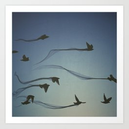 flight trail  Art Print
