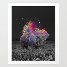 true colors II Art Print