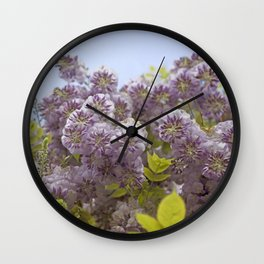 Lavender Wisteria with Apple Green Leaves and Powder Blue Sky Wall Clock