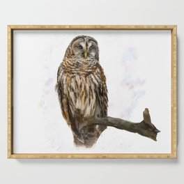 Digital Painting of  Barred Owl perching Serving Tray