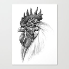 The Rooster SK065 Canvas Print