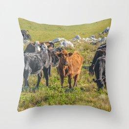 Cows at Countryside, Maldonado, Uruguay Throw Pillow