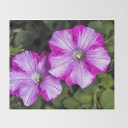 Pair of Petunia flowers Throw Blanket