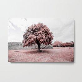 Dzibilchaltun Tree Metal Print