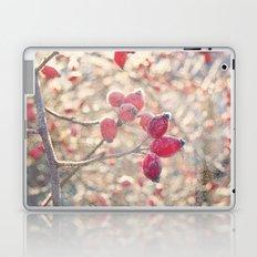 December morning Laptop & iPad Skin