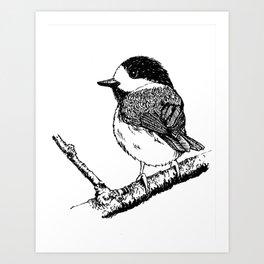 Yamagara Art Print