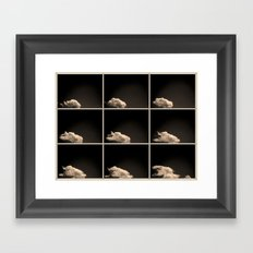A brief sighting Framed Art Print