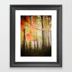 Autumn Fire Framed Art Print