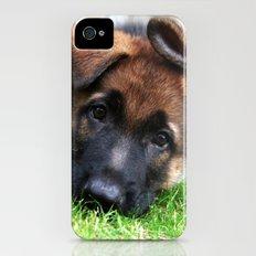 Playful Puppy. iPhone (4, 4s) Slim Case