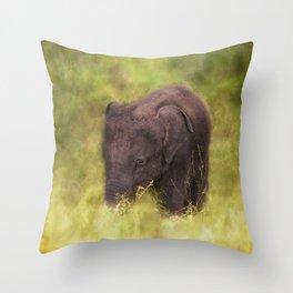 Elephant Baby Throw Pillow