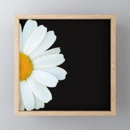 Hello Daisy - White Flower Black Background #decor #society6 #buyart Framed Mini Art Print