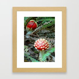 Amanita Framed Art Print