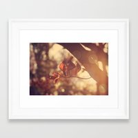 stay gold Framed Art Prints featuring Stay Gold by Oh, Good Gracious!