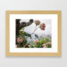 Roses of Lebanon Framed Art Print