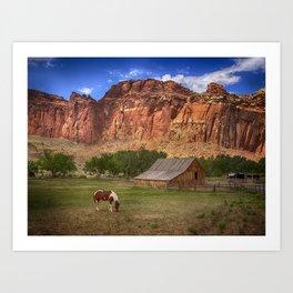 Horse and Barn at Capitol Reef National Park, Utah Art Print