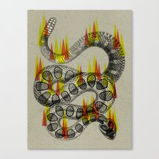 rattlesnake on fire! Canvas Print