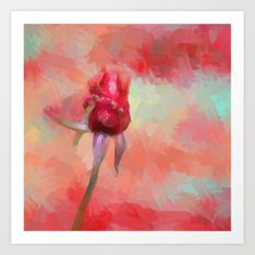 Red Rose In Spring Art Print