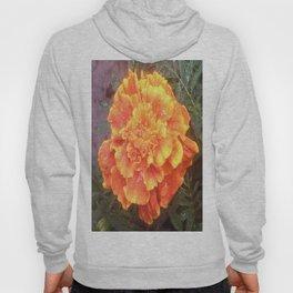 Raindrops on a Marigold flower Hoody