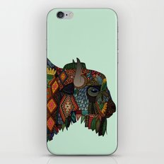 bison mint iPhone & iPod Skin