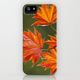 Abstract Maple Leaves iPhone Case