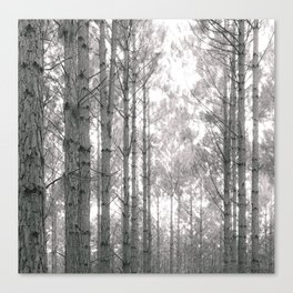 Through the Forest Sweetly Canvas Print
