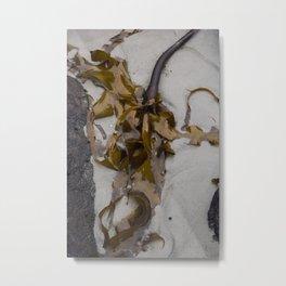 Golden Kelp Metal Print
