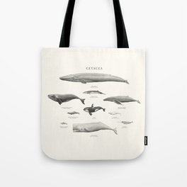 Cetacea Tote Bag
