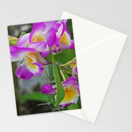 The Seduction Game Stationery Cards