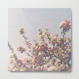 Beautiful Spring Metal Print