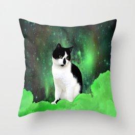 Gypsy Da Fleuky Cat and the Kitty Emerald Night Throw Pillow