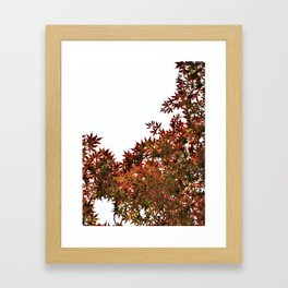 Changing of Seasons Framed Art Print