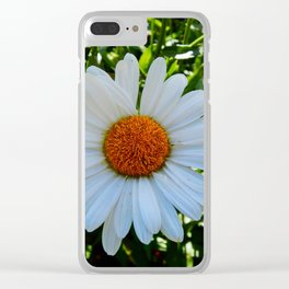 Single White Daisy Clear iPhone Case