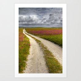 Clover fields at Balranald, Scotland Art Print