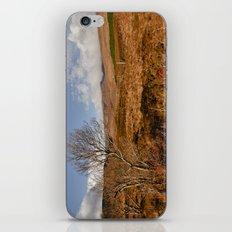 Glen Hope iPhone & iPod Skin