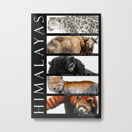Animals of the Himalayas Metal Print