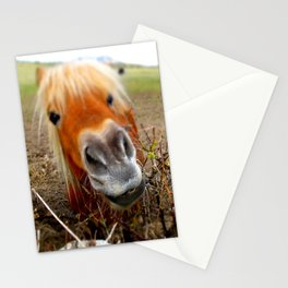 Redhead horse Stationery Cards