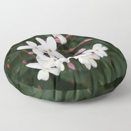 Delicate White Jasmine Blossom with Green Background Floor Pillow