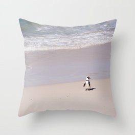 Lone African Penguin on Cape Town beach Throw Pillow