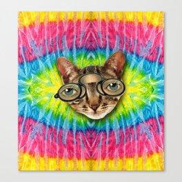 TIE DYE CAT Canvas Print