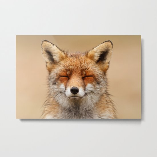 Zen Fox (Red Fox smiling) Metal Print