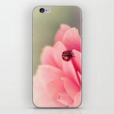 Ladybird on flower iPhone & iPod Skin