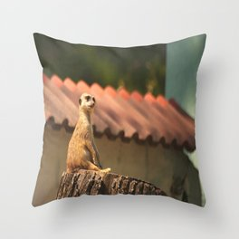 Meerkat Funny Observer #decor #society6 Throw Pillow